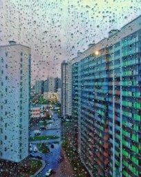 Дождливое Мурино